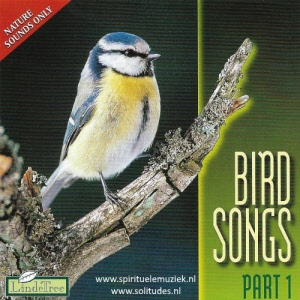 Birdsongs part 1 Lindetree